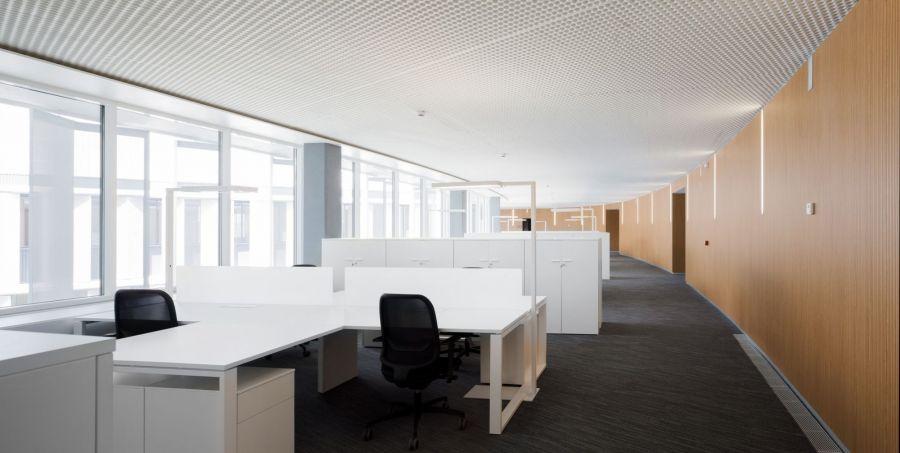 oficinas-ayuntamiento-vitoria-9_baja_L