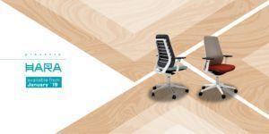 Nueva silla Hara