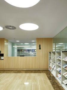 Biblioteca IESE (1)